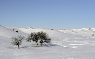 Snowscape Wallpaper for Android, iPhone and iPad