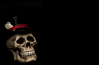 Lucky Skull - Obrázkek zdarma pro HTC One