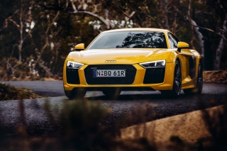 Audi R8 V10 Plus Yellow Body Color - Obrázkek zdarma pro Widescreen Desktop PC 1280x800