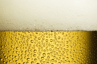 Beer Foam Picture for Android, iPhone and iPad