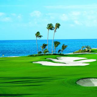 Golf Course on Ponte Vedra Beach - Obrázkek zdarma pro 208x208