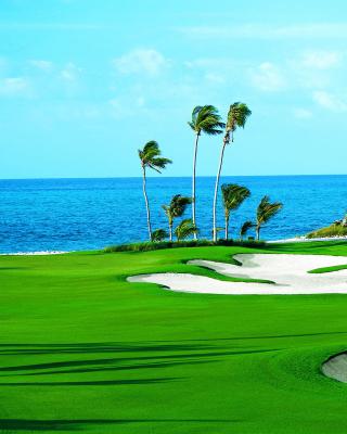 Golf Course on Ponte Vedra Beach - Obrázkek zdarma pro Nokia X1-01