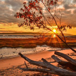 Romantic Sunset in Semidarkness - Obrázkek zdarma pro 1024x1024