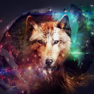 Magic Wolf - Obrázkek zdarma pro iPad