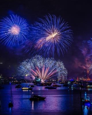 New Year Fireworks - Fondos de pantalla gratis para Blackberry RIM Torch 9800