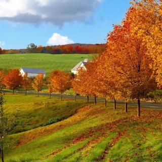 Autumn in Slovakia - Obrázkek zdarma pro iPad