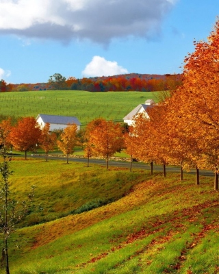 Autumn in Slovakia - Obrázkek zdarma pro 480x854