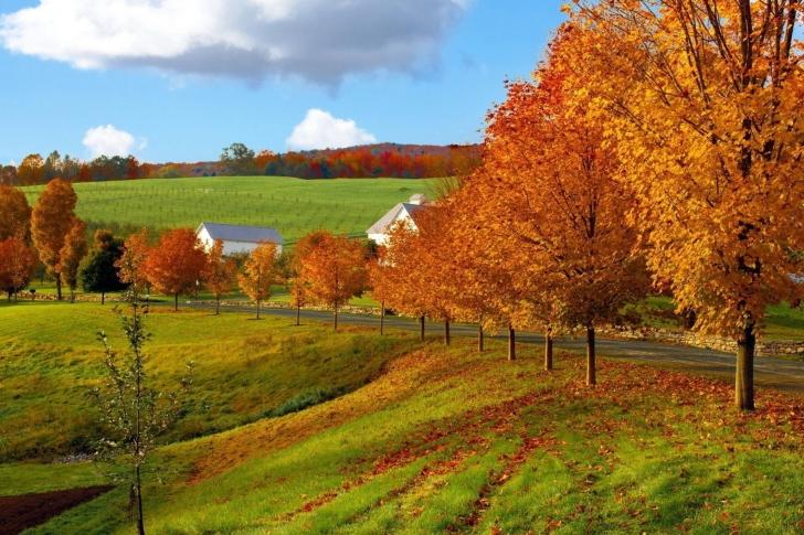 Autumn in Slovakia wallpaper