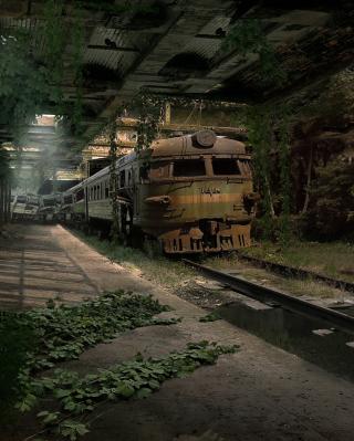 Abandoned Train - Obrázkek zdarma pro Nokia Asha 502