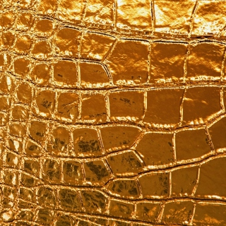 Golden Crocodile Leather - Obrázkek zdarma pro 208x208