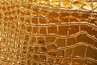 Golden Crocodile Leather - Obrázkek zdarma pro Widescreen Desktop PC 1440x900