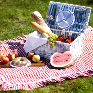 Summer Picnic - Obrázkek zdarma pro 208x208