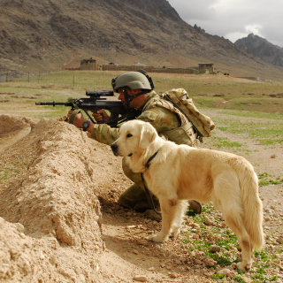 Soldier With Dog - Obrázkek zdarma pro 1024x1024