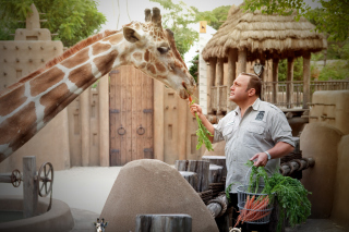 Zookeeper - Obrázkek zdarma pro Samsung Galaxy Tab S 8.4