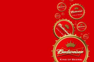 Budweiser Cap - Fondos de pantalla gratis para Samsung S5367 Galaxy Y TV