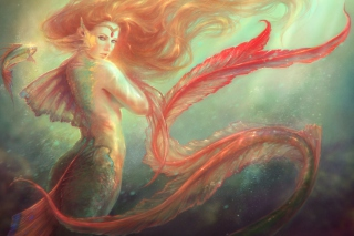 Mermaid Painting Picture for Android, iPhone and iPad