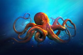 Octopus HD - Obrázkek zdarma pro Android 800x1280