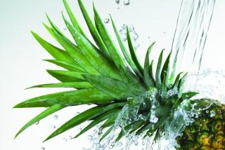 Pineapple - Obrázkek zdarma pro Android 600x1024