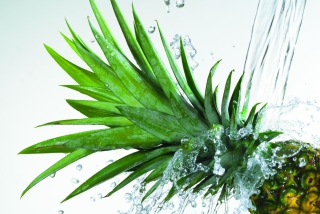 Pineapple - Obrázkek zdarma pro Samsung Galaxy