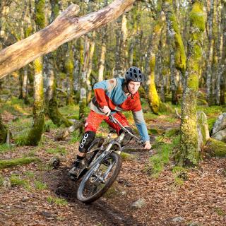 Mountainbike - Obrázkek zdarma pro iPad 2