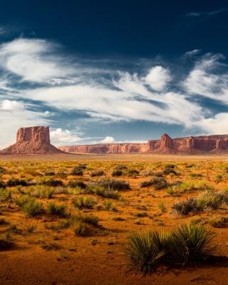 Desert and rocks - Obrázkek zdarma pro 352x416