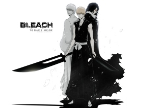 Ichigo Kurosaki, Bleach - Obrázkek zdarma pro 1200x1024