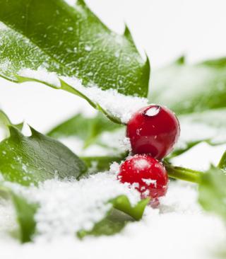 Frozen Cranberries - Obrázkek zdarma pro 132x176