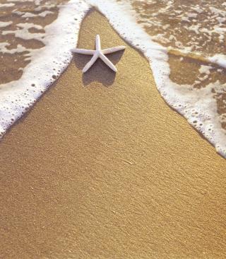 Christmas Vacation on Bahamas - Obrázkek zdarma pro Nokia Asha 311