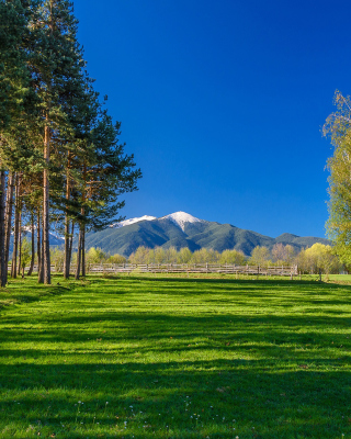 Bulgaria Mountains near Sofia - Obrázkek zdarma pro 640x960
