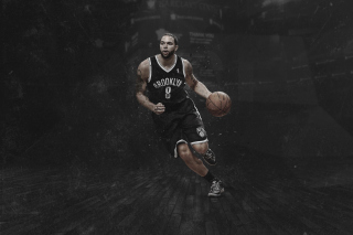 Brooklyn Nets, Deron Williams - Obrázkek zdarma pro Widescreen Desktop PC 1680x1050