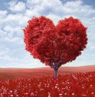 Heart Tree - Obrázkek zdarma pro iPad Air