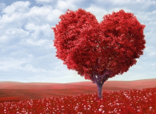 Heart Tree sfondi gratuiti per cellulari Android, iPhone, iPad e desktop