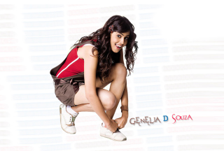Free Genelia D'Souza Picture for Android, iPhone and iPad