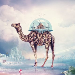Magical Camel - Obrázkek zdarma pro 128x128