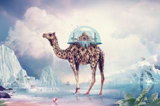 Magical Camel - Obrázkek zdarma pro Nokia X2-01