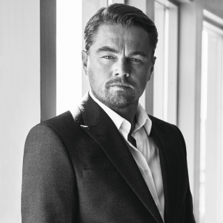 Leonardo DiCaprio Celebuzz Photo - Obrázkek zdarma pro iPad Air
