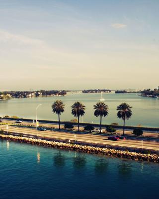 Miami Beach - Obrázkek zdarma pro 240x432