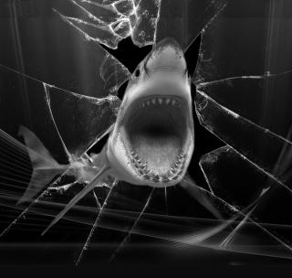 Shark - Obrázkek zdarma pro iPad mini