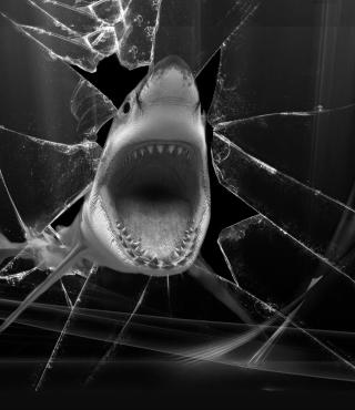 Shark - Obrázkek zdarma pro iPhone 4S