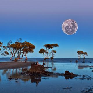 Moon Landscape in Namibia Safari - Obrázkek zdarma pro iPad 2