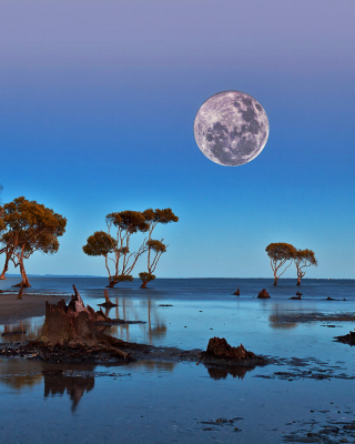 Moon Landscape in Namibia Safari - Obrázkek zdarma pro Nokia Asha 202