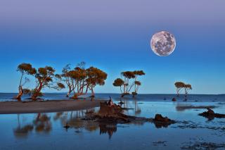 Moon Landscape in Namibia Safari - Obrázkek zdarma pro Sony Xperia Z2 Tablet
