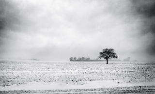 Black And White Winter Background for Android, iPhone and iPad