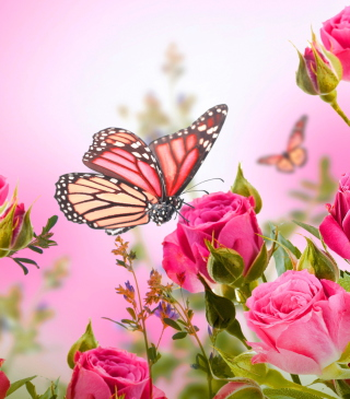 Rose Butterfly - Obrázkek zdarma pro Nokia 300 Asha