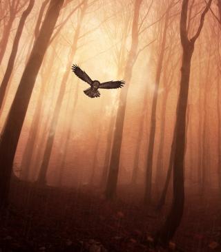 Dark Owl In Dark Forest - Obrázkek zdarma pro Nokia Asha 202