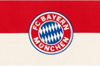 Fc Bayern Munchen - Obrázkek zdarma pro HTC Desire HD