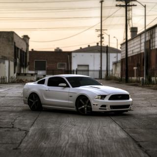 Ford Mustang GT 643 - Obrázkek zdarma pro iPad Air