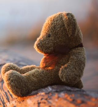 Lonely Teddy Bear - Obrázkek zdarma pro 1024x1024