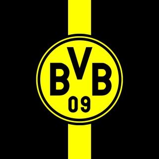 Borussia Dortmund (BVB) - Obrázkek zdarma pro iPad mini 2