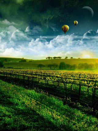 Morning Horizon - Obrázkek zdarma pro Nokia C3-01 Gold Edition